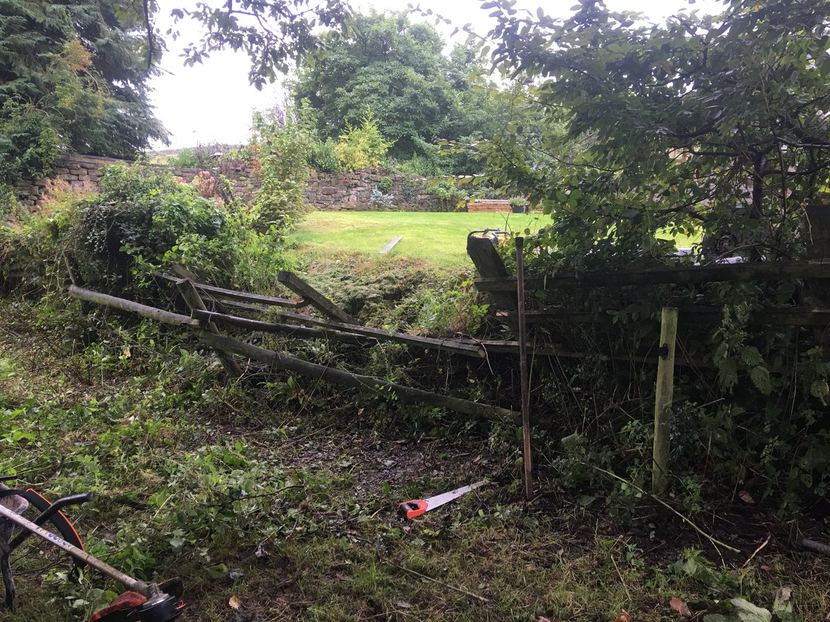 Image of fencing repair cleddon